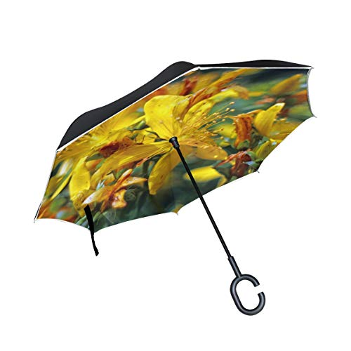 Double Layer Inverted Blossom Bloom St Johns Wort Hypericum Perforatum Umbrellas Reverse Folding Umbrella Windproof Uv Protection Big Straight Umbrella for Car Rain Outdoor with C-Shaped Handle