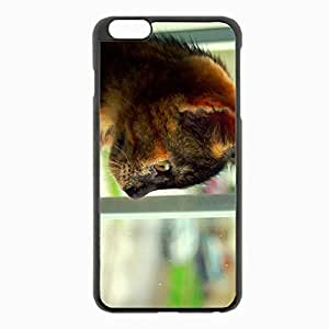 iPhone 6 Plus Black Hardshell Case 5.5inch - kitten spotted view profile Desin Images Protector Back Cover