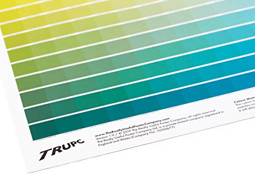 The Really Useful CMYK Colour Chart - 1025 Unique Colour Swatches - A1 Size CMYK Color Chart - Wall Art Poster or Gift for Graphic Designer - Swatch Books Alternative (A1 Colour)