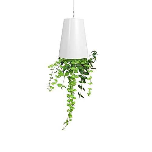 - Upside Down Hanging Planter Flower Growing Pot Tomato & Herb Planter for Indoor Outdoor Decoration(White)