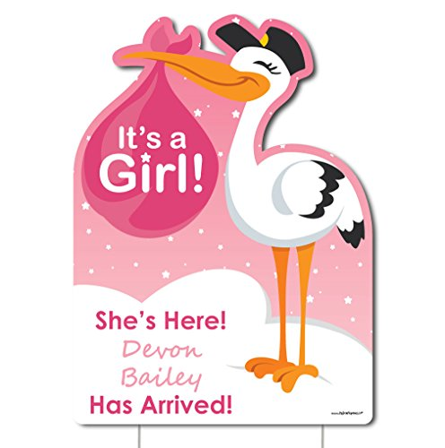 Big Dot of Happiness Custom Girl Special Delivery - Baby Arrival Sign - Pink It's A Girl Stork Personalized Baby Announcement & Welcome Yard Sign -