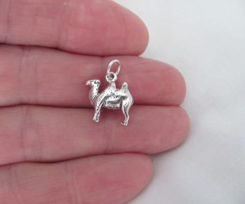 Sterling Silver 23x5mm Track /& Field Cross Country Shoe with Wings Running Charm