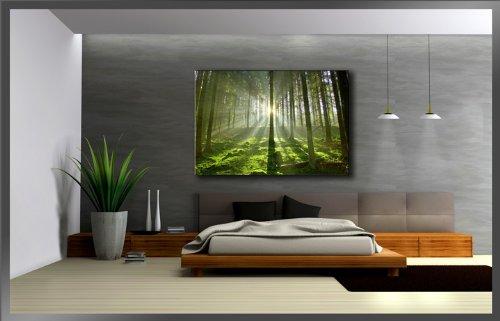 dise/ño de bosque Forest Visario 5130 Fotograf/ía sobre lienzo 120 x 80 cm