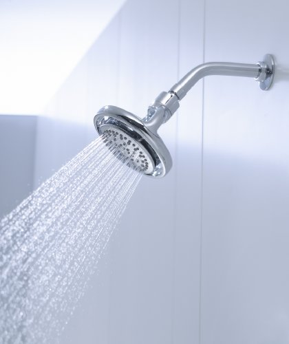 KOHLER K-15996-CP Flipside 01 Showerhead, Polished Chrome