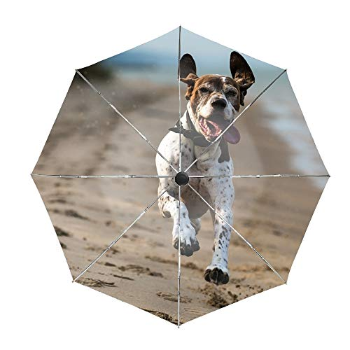 German Shorthaired Pointer Compact Travel Umbrella with Windproof Double Canopy Construction - Auto Open/Close Button ()