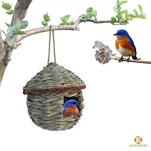 Roosting Nest - 4