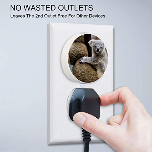 Small Night Light with Australian Animal Koala Night Light Plug in Wall with Dusk-to-Dawn Sensor Pack of 4