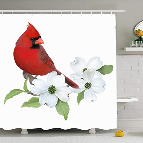 Ahawoso Shower Curtain 66x72 Inches Red Dogwood Northern Cardinal Perched On Blooming Joy White Nature Green Branch Flower Tree Design Waterproof Polyester Fabric Set with Hooks