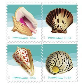 Seashells Postcard Stamp USPS Forever Stamps, Roll of 100 - US Postage Card - Ups Class First International