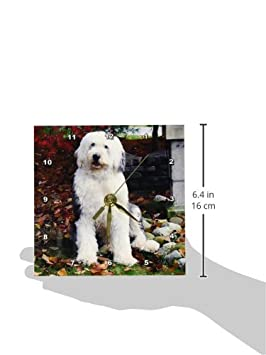 3dRose dc/_1070/_1 Old English Sheepdog Desk Clock 6 by 6-Inch