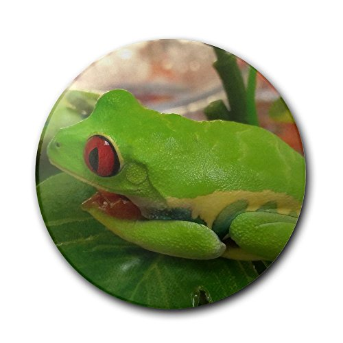Tree Frog Gifts Kritters In The Mailbox Tree Frog