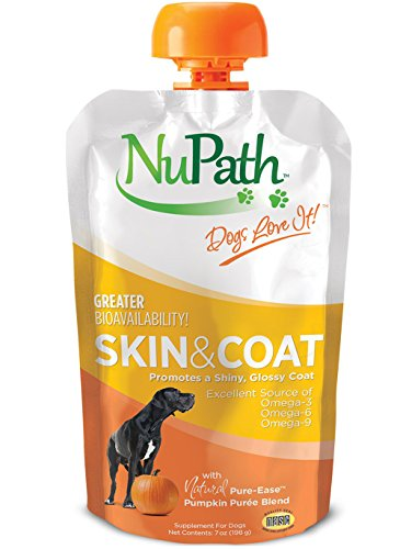 Homemade Disney Costumes (NuPath Skin & Coat Pumpkin Supplement Squeeze Pouches For Dogs: Rich In Fiber And Vitamin A – In Easy-To-Squeeze Pouch (Skin & Coat, 1-Pack))