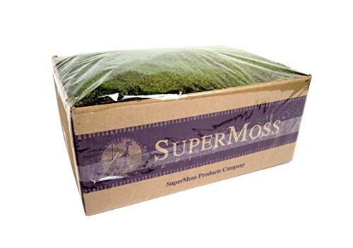 Supermoss 21598) Sheet Moss Preserved, Fresh Green Wet Us...