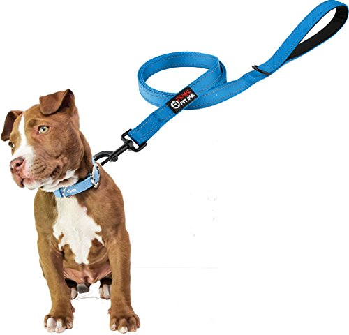 Dog Leash Stronger Premium Reflective product image