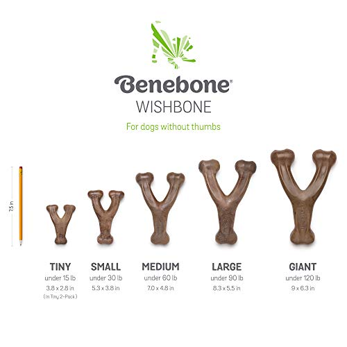 Benebone Wishbone Durable Dog Chew Toy for Aggressive Chewers, Made in USA, Medium, Real Chicken Flavor