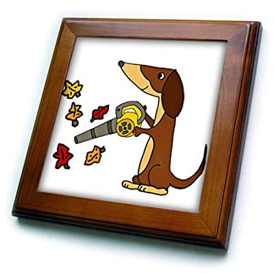 3dRose All Smiles Art - Pets - Cute Funny Unique Dachshund Dog Using Leaf Blower Cartoon - Framed Tiles