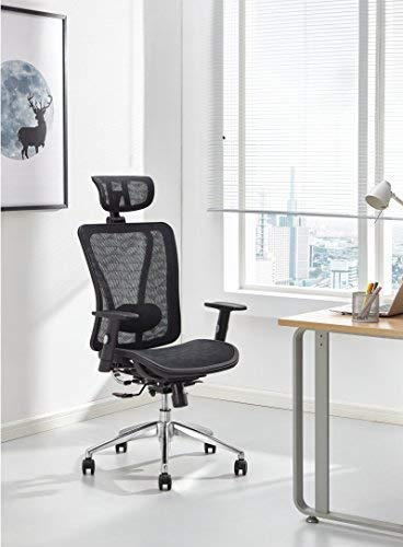 Cedric Ergonomic Mesh Office Chair, High Back Desk Chair with Adjustable Lumbar Support, PU Armrests and Mesh Headrest and seat(CD-874MH)