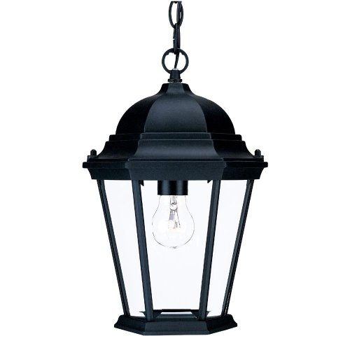 (Acclaim 5206BK Richmond Collection 1-Light Outdoor Light Fixture Hanging Lantern, Matte Black)