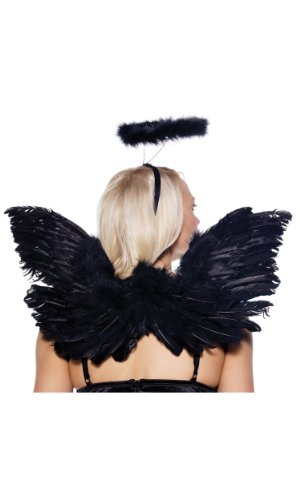 Halloween Fallen Angel Wings (Black or White Angel Kit Costume Accessory Set, Black, Size One)