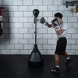 Title Boxing Rapid-Reflex Boxing Bar Tri-Bag