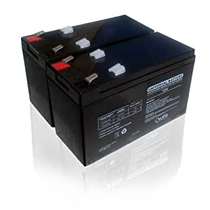Razor Dirt Quad Replacement Batteries. Reuse Existing Connectors. Includes 2 Batteries