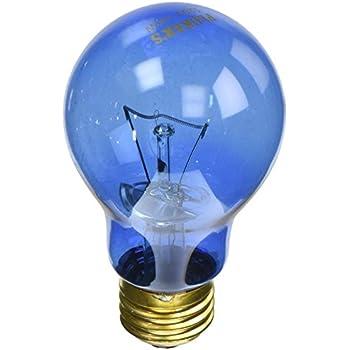 Amazon.com: (2 unidades) Zoo Med Luz de día azul ...