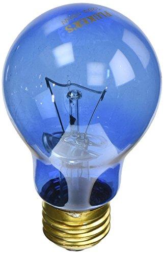 Fluker Labs SFK22403 Reptile Incandescent Daylight Bulb for Pet Habitat, 100-watt, Blue