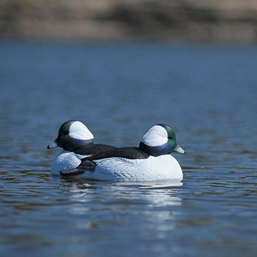 Hunting Gear Over-Size Buffleheads (1/2 Dozen) by Avery (Image #4)