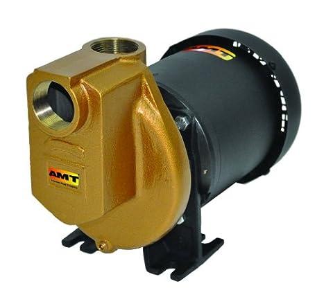 AMT Pump 3890-97 Self-Priming Chemical Pump, Bronze, 3/4 HP, 1 Phase, 115/230V, Curve A, 1-1/2