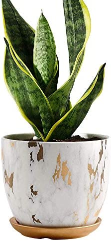 16cm Mocca Stylish Flower Pot for Office Living Room with Lovely Knitted Pattern