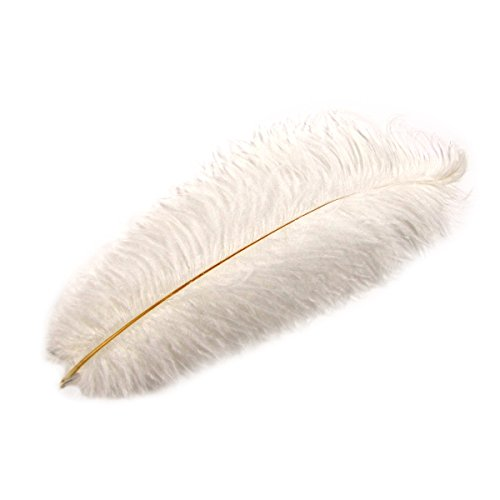 TG,LLC White Ostrich Plume Feather Pirate Steampunk Fancy Victorian Hat Feathers Plumes ()