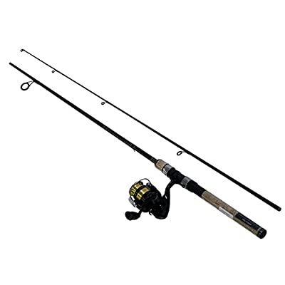 Daiwa DSK20-B/F602ML D-Shock Freshwater Spinning Combo, 1 Bearing, 6' Length, 2Piece Rod, Medium/Light Power, Fast Action, Ambidextrous