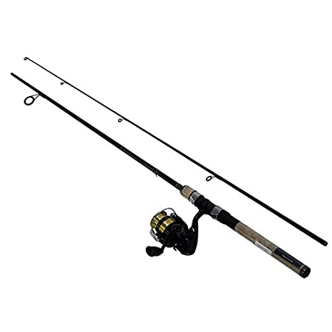 552ee2f1f66 Amazon.com : Daiwa DSK20-B/F602ML D-Shock Freshwater Spinning Combo, 1  Bearing, 6' Length, 2Piece Rod, Medium/Light Power, Fast Action, ...