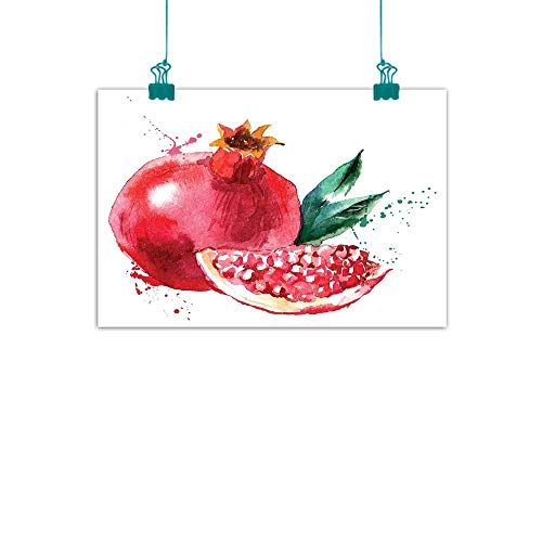 t Oil Paintings Pomegranate Hand Drawn Watercolor Style Paint Yummy Juicy Winter Taste Art Canvas Prints for Home Decorations 24