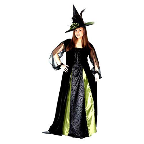 FunWorld Women's Plus Goth Maiden Witch, Black, 16W-24W Costume]()