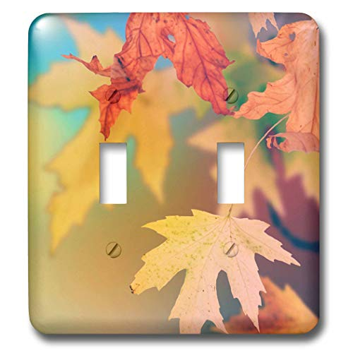 3dRose Stamp City - nature - Photograph of fall leaves in a rainbow of colors. - Light Switch Covers - double toggle switch (lsp_291293_2)