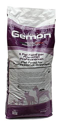 Ração Gemon Kitten Frango e Arroz para Gatos Filhotes 20kg Gemon Raça Filhotes, Sabor Frango 20kg