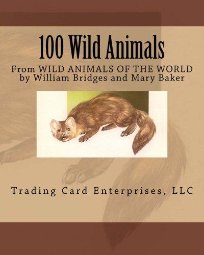 100 Wild Animals (100 Wild Animals)