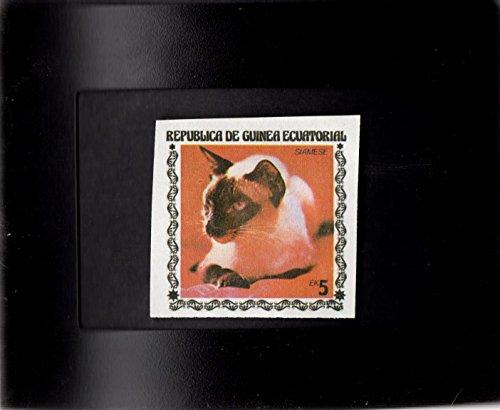 (Tchotchke Framed Stamp Art - Collectible International Postage Stamp - Siamese Cat )