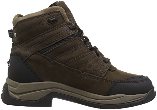 Paddock Terrain H2O Boots java Insulated Ariat UPanxqx