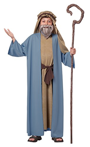 California Costumes Herdsman/Noah Boy Costume, One Color, Small/Medium
