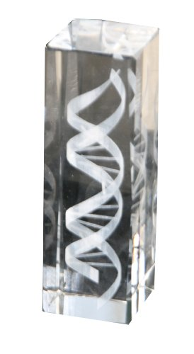 Crystal Helix (DNA Helix Crystal Statue (6 Inches in Height))