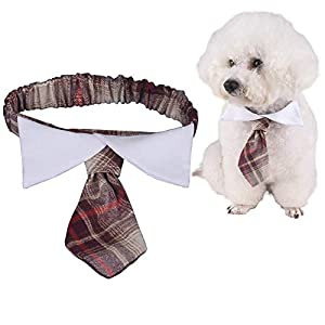 ANIAC Pet Elastic British Style Necktie with Bow Tie Collar Neck Accessories for Cats and Small Dogs