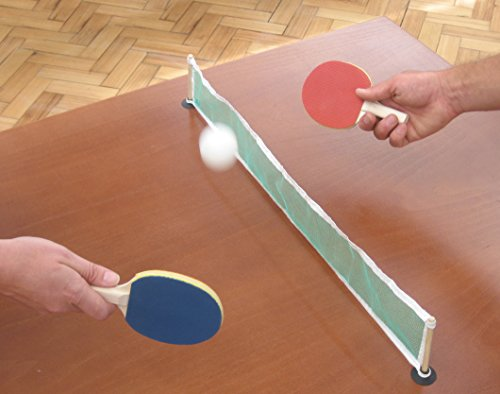 Review NPW-USA Desktop Ping Pong/Table