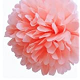 NO:1 10 Pack Tissue Paper Flower Ball Pom-poms For Party Wedding Home Decoration Pink