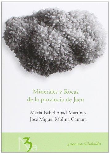 Descargar Libro Minerales Y Rocas De La Provincia De Jaén María Isabel Abad Martínez