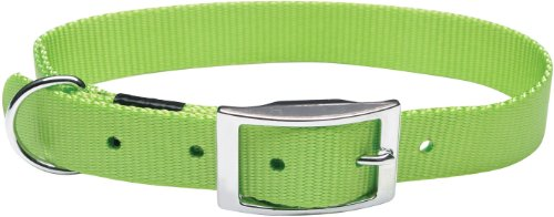 Dogit Nylon Single Ply Dog Collar with Buckle, Small, 12-Inch, Green (Single Ply Dog Collar)