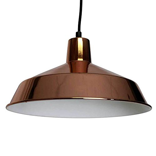 Black And Copper Pendant Light in US - 7