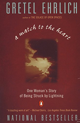 Amazon a match to the heart one womans story of being struck a match to the heart one womans story of being struck by lightning by fandeluxe Image collections