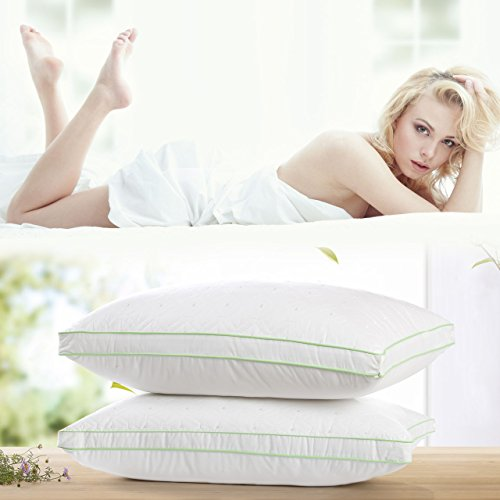 Larnn Bed pillows for sleeping 2 Pack with Dust Mite Repellent Silk Cotton and Feather Velvet Filler(Queen Size)